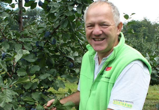 Obstbauer Hansruedi Wirz aus Reigoldswil, Präsident des Früchtezentrums Basel