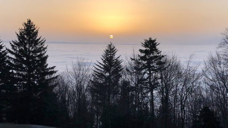 Morgenstimmung über dem Nebelmeer