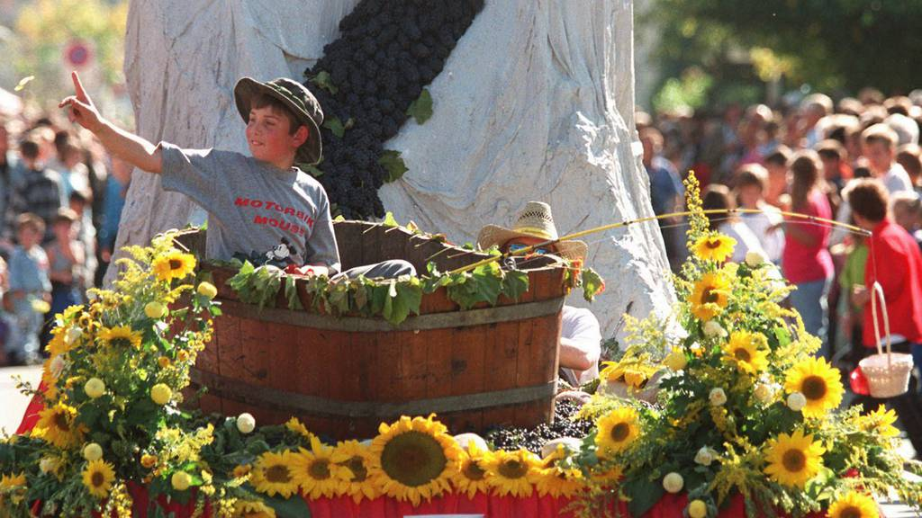 Neue Poller schützen Winzerfest-Besucher