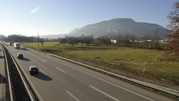 Areal Felmatt neben der Autobahn A1: Hier kommt kein Schwerverkehrskontrollzentrum hin.