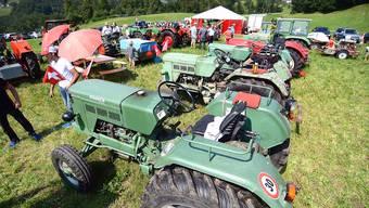 Traktorfahrer präsentierten ihre alten Zugfahrzeugen.