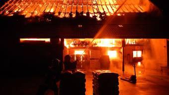 Ein Brand hat in der Nacht auf Donnerstag in Bussnang eine Scheune zerstört und zahlreichen Kälbern und Hühner das Leben gekostet.