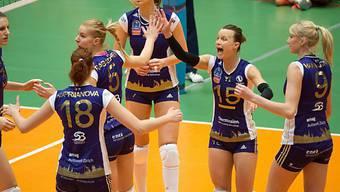 Volero Zürich mit solider Leistung zum Sieg in Polen