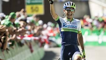 Esteban Chavez vom australischen Team Orica Green-Edge feiert nach seinem Etappensieg bei der Tour de Suisse 2014 bei der Vuelta seinen grössten Erfolg seiner Karriere