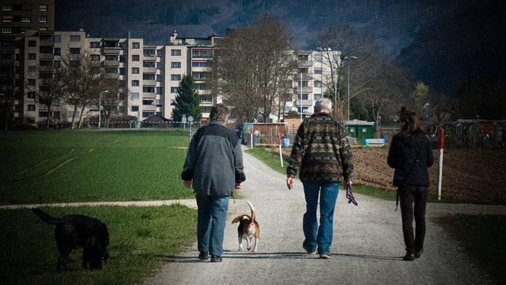 Hundehalter bemerken auf ihren täglichen Spaziergängen durch die Quartiere rasch, wenn etwas nicht stimmt, sagt die Kantonspolizei Schwyz. (Symbolbild)