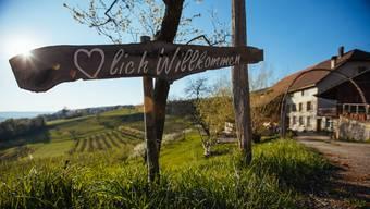 Der Herbst lädt auch für einen Besuch beim Weinbauern.