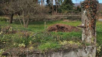 Der Wasserverbrauch dieses Rickenbacher Brunnens ist vernachlässigbar.