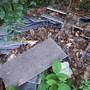 Die Polizei fand ca. 150 – 200 kg Eternit-Platten im Wald vor. Es wird angenommen, dass diese mit einem Auto transportiert wurden.