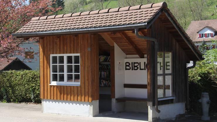 Im ehemaligen Bushüsli gibt es viele Bücher für Erwachsene und Jugendliche.