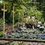 Der Waldfriedhof in Rheinfelden. In Fahrwangen soll es bald eine ähnliche Ruhestätte geben.