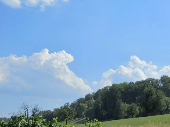 Wolken hat es, doch nicht der ersehnte Regen.