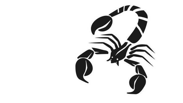 Das Glück gepachtet: Skorpion