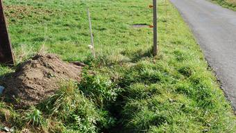 Umstrittenes Projekt: Ob der Ibisguetbach im Eggenwiler Oberdorf bald wieder an die Oberfläche kommt, entscheidet sich an der Gemeindeversammlung vom Freitag. (sl)