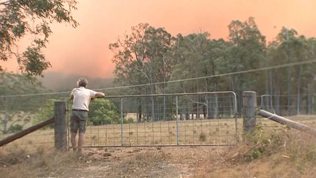 Buschbrände in Australien sind unter Kontrolle