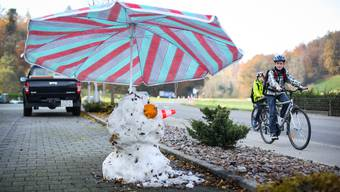 Last (snow) man standing in Ammerswil.