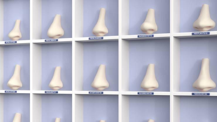 Wer eine schöne Nase will, kann jetzt ins Uni-Spital. Die privaten Schönheitschirurgen ärgern sich über die neue Konkurrenz.