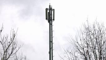 Der Aargau wertet am zweithäufigsten schweizweit Antennendaten aus.
