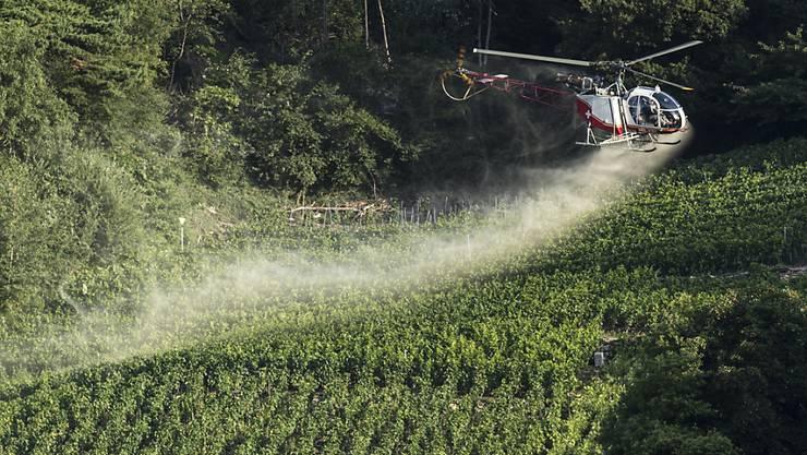Pflanzenbehandlungsmittel seien in der Bevölkerung nicht hoch angesehen und würden zum Teil langfristig auch umweltschädigend wirken. (Symbolbild)
