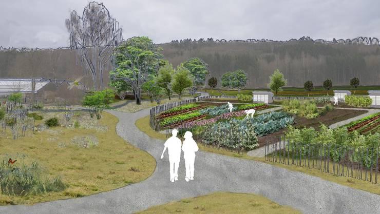 So stellt sich die Stadt Zürich das Areal vor: Neben Familien- und Gemeinschaftsgärten soll auch ein Park entstehen.