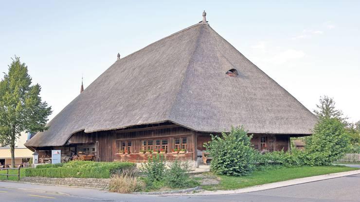 Strohdachhaus In Kölliken