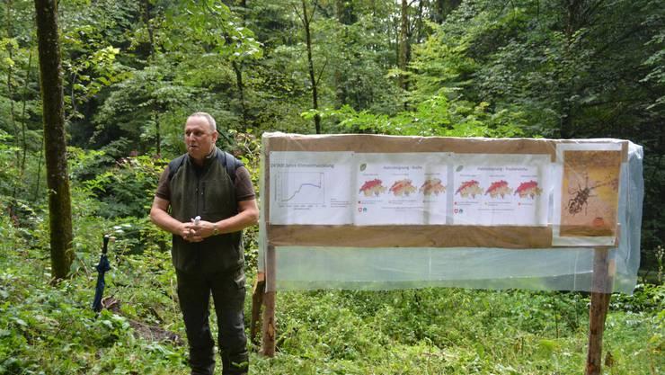 Förster erklärt Auswirkungen des Klimawandels auf die Ausbreitung der Baumarten