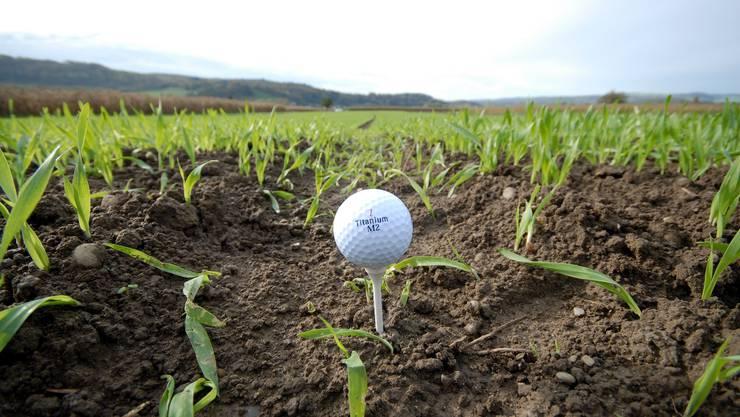 Golfplatzzone.