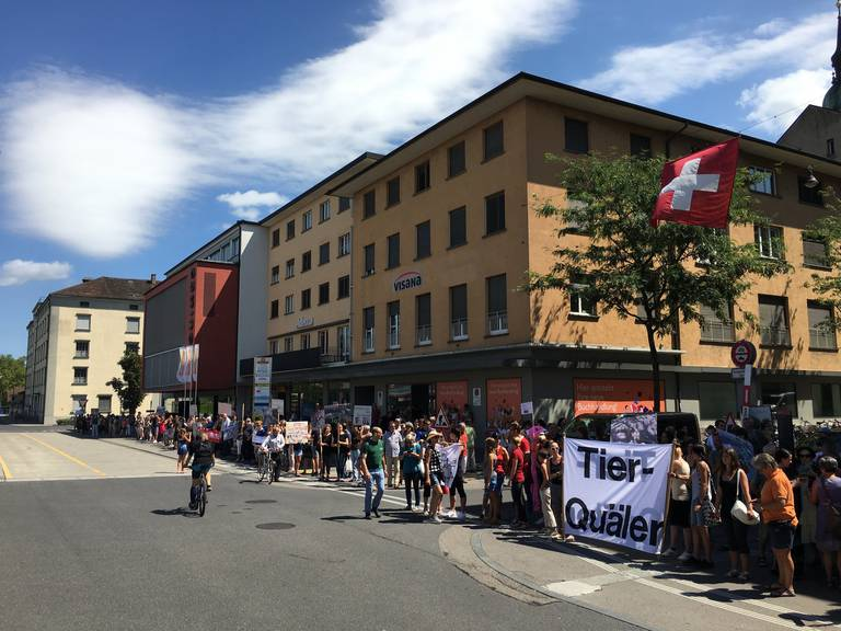 In Frauenfeld demonstrieren rund 200 Menschen gegen Pferdequäler U.K. (Bild FM1Today/Raphael Rohner)
