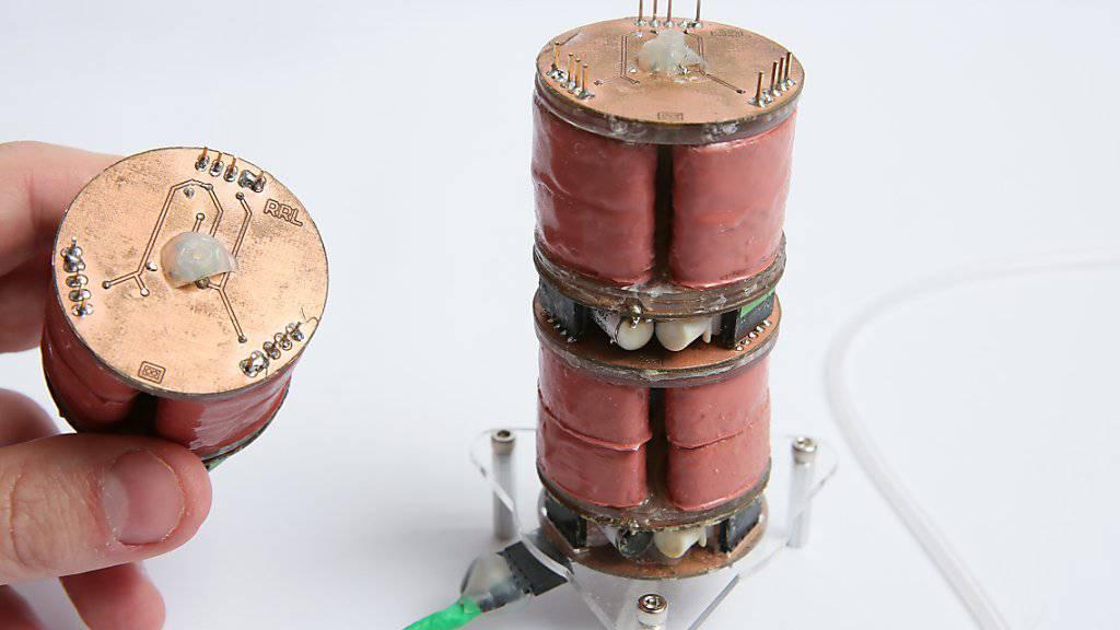 Die einzelnen Elemente des Roboters bestehen aus je drei luftgefüllten Kammern. Durch Absaugen der Luft aus einzelnen Kammern krümmt sich der Roboter.