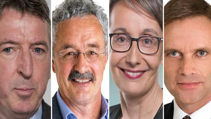 Peter Voser (CVP), Robert Obrist (Grüne), Elisabeth Burgener (SP) und Jean-Pierre Gallati (SVP).