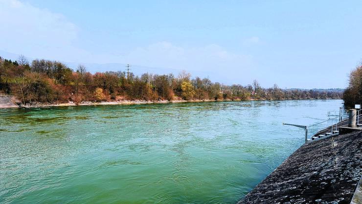 Das Projekt «Naturnahes Aareufer Flumenthal» wird überarbeitet und dann neu aufgelegt.