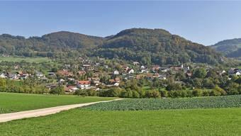 Gemeinderatswahlen in Kienberg, März 2019