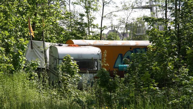 Der Wagenpark ist neu im Wäldchen zwischen Badi und Campingplatz... Aber nur für kurze Zeit