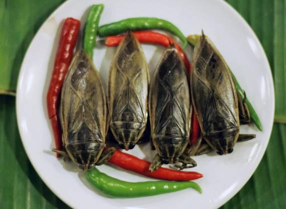 Insekten-Essen: In Thailand (fast) normal.
