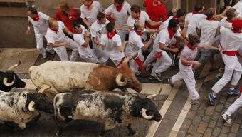 Stierhatz in Pamplona