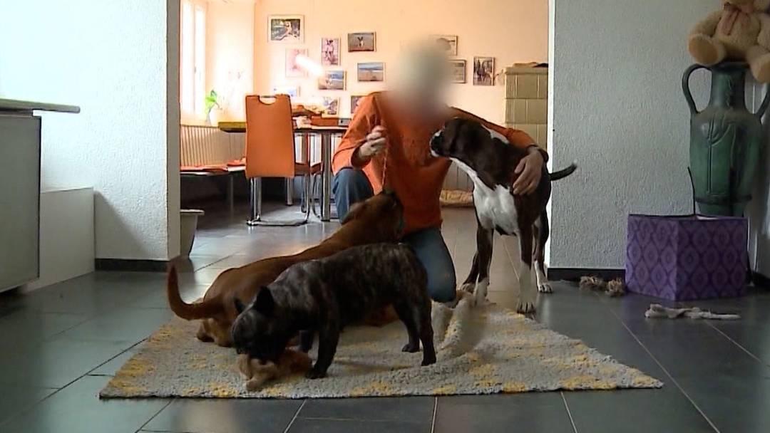 Hundezüchterin Daniela K. von allen Vorwürfen freigesprochen