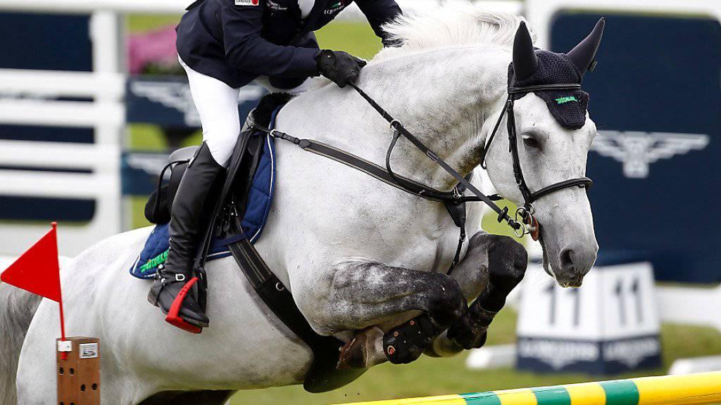 """Der Deutsche Hans-Dieter Dreher und sein Pferd """"Cool and Easy"""", im Bild im Juni 2016 während des CSIO in St. Gallen, gewannen am CSI Basel die Hauptprüfung des ersten Tages"""