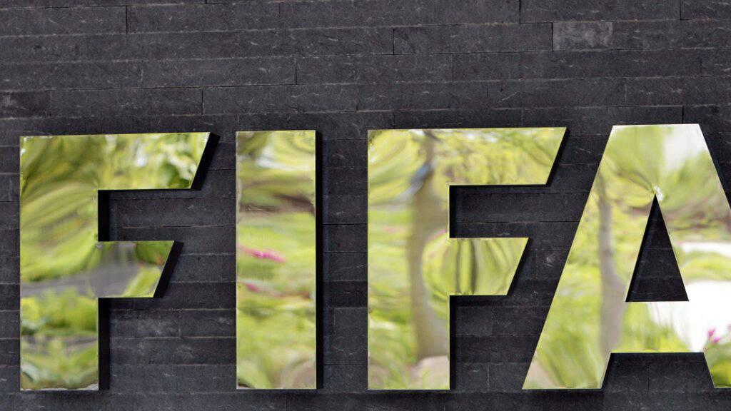 IOC teilt grosse Sorge über FIFA-Pläne zur Zwei-Jahres-WM