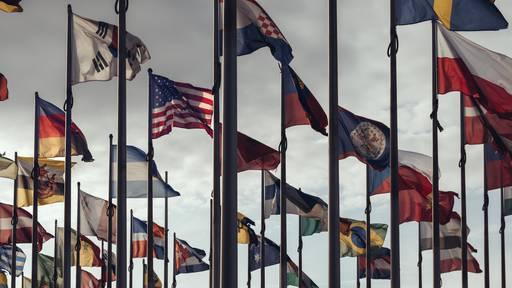 Wie viele Länderfahnen kennst du?