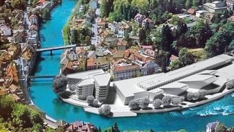 Mit ihrer provokativen Fotomontage stellt die IG vor allem die Grösse des Verenahof-Projekts infrage.