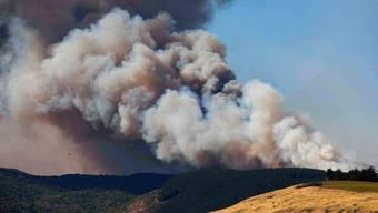 Waldbrände um Christchurch, Neuseeland (Februar 2017)