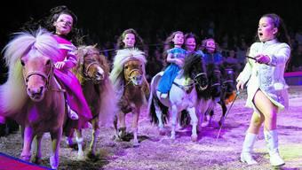 Premiere Circus Knie 2019