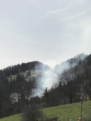 Die Feuerwehrleute hatten mit dem unzugänglichen Gelände zu kämpfen.