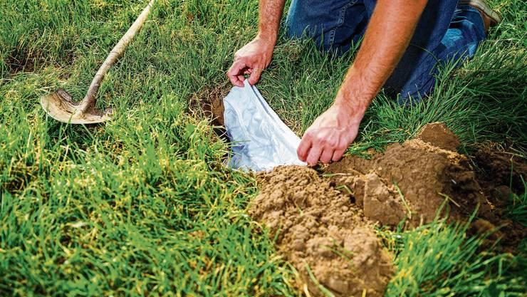 Eine Baumwollunterhose wird eingegraben und damit zum Indikator für die Vielfalt an zersetzenden Kleinlebewesen im Boden.
