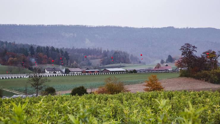 Ballon-Aktion gegen die Deponie Steindler: Die Ballone in Rot zeigen an, wie hoch der Erdboden in Zukunft liegen würde.