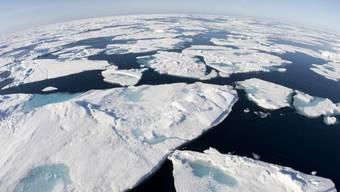 Grosse Eisschollen aus der Arktis vor der kanadischen Küste (Archiv)