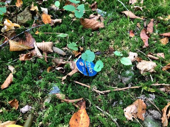 Immer wieder liegen leere Kondomverpackungen am Waldboden.