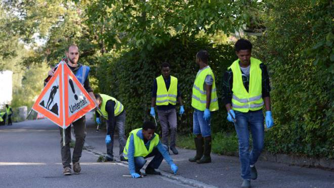 Eine Gruppe Asylsuchender entfernt Unkraut auf den Strassen Arlesheims – eine Arbeit, für die der Werkhof keine Ressourcen hat. Foto: Juri Junkov