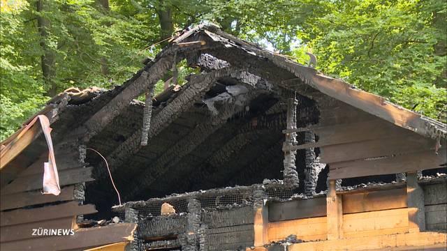 100'000 Franken Sachschaden nach Waldhütten-Brand beim Zoo Zürich