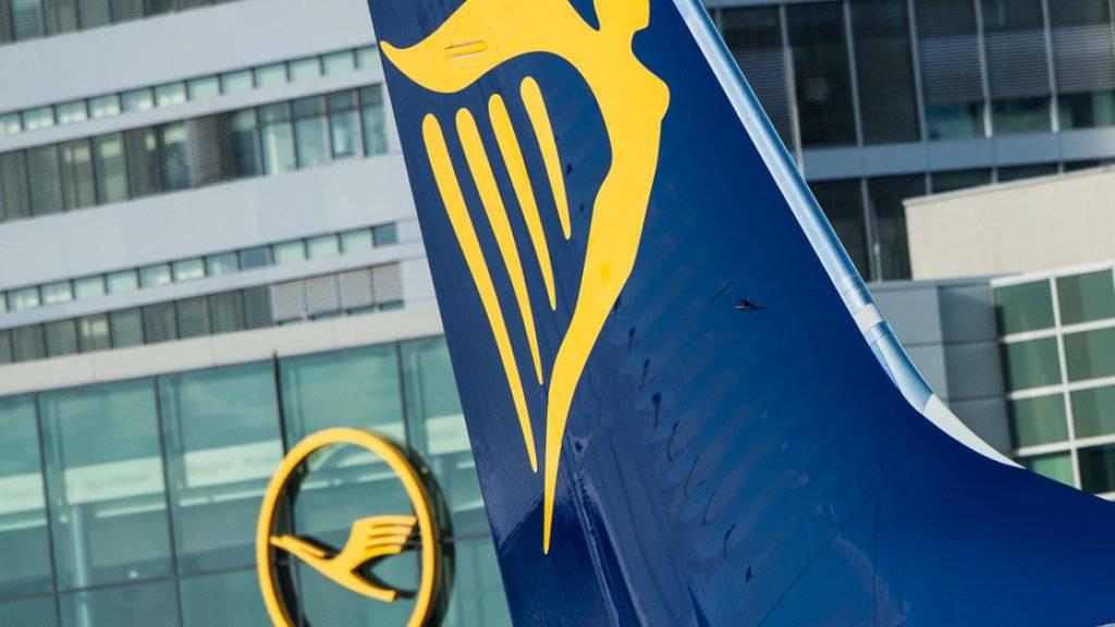 Ein Jet von Ryanair am Flughafen in Frankfurt am Main. Bis zum Ende des Sommerflugplans Ende Oktober will die irische Airline täglich zwischen 40 und 50 Flüge zu streichen. (Archiv)