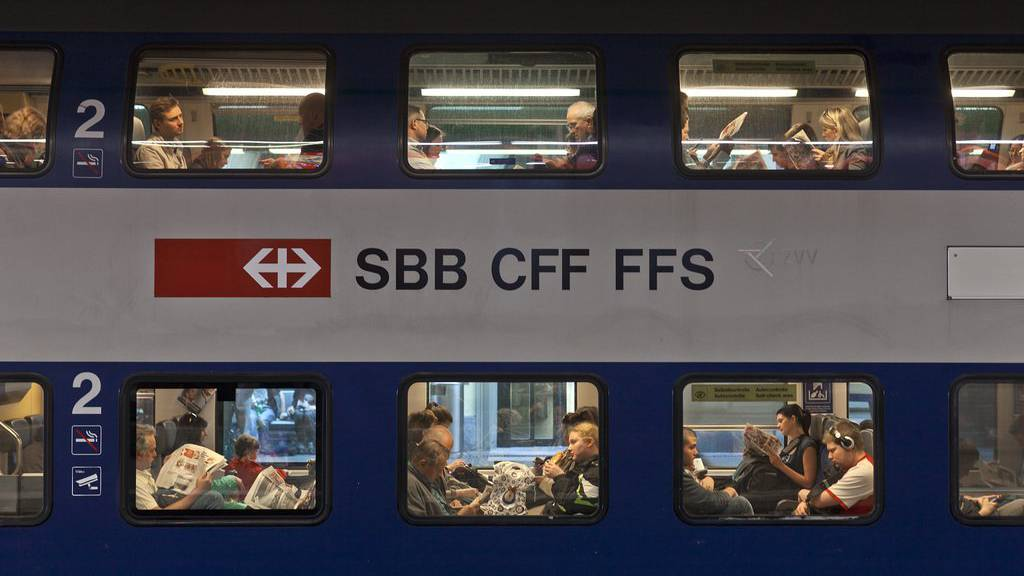 Mehrere Schafe kamen in Winterthur unter einen Zug.